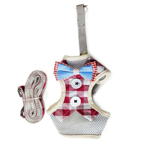Image of cat vest leash - Cute Cats Store