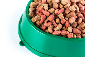 Use a Meat Dehydrator to Discount Dog Food and Get Better Quality