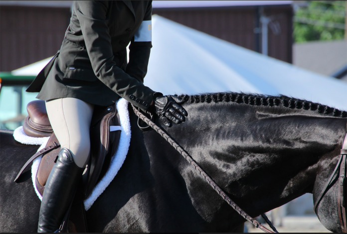 "19""+ Hunter/Jumper Saddles"
