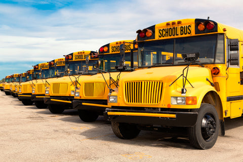 School Buses available for charter service