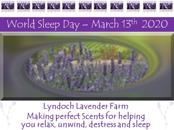 World Sleep Day 13th March