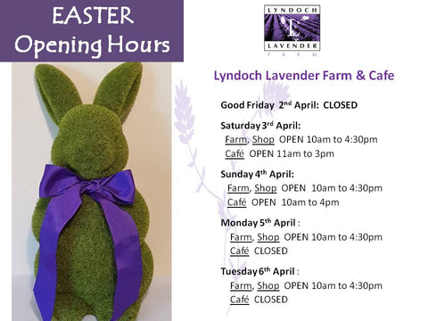 easter opening times at Lyndoch Lavender Farm