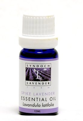 Lavandula latifolia (Spike Lavender) Pure Essential Oil