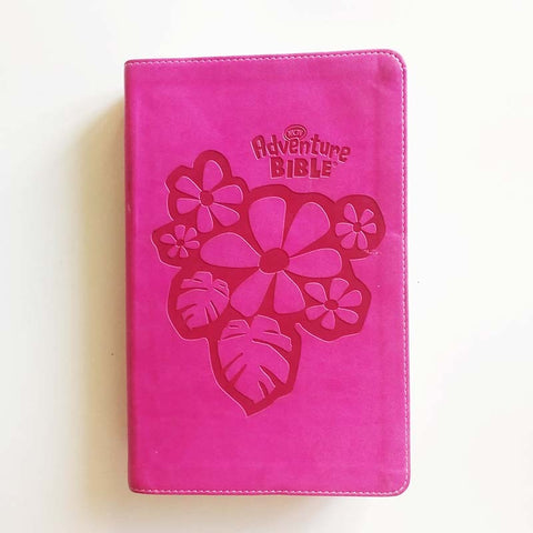 NKJV Girls Adventure Bible