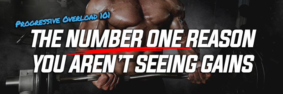 The NUMBER ONE Reason You Aren't Seeing Gains!