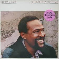 Marvin Gaye - Dream of a Lifetime