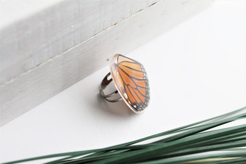 Butterfly Wing Rings