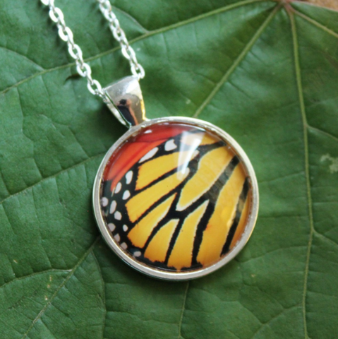 Butterfly Image Necklaces