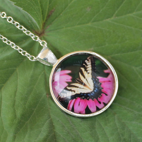 Old World Swallowtail, Butterfly Pendant Necklace, Papilio Machaon, Butterfly Necklace, Picture Pendant of Butterfly, Entomology Necklace