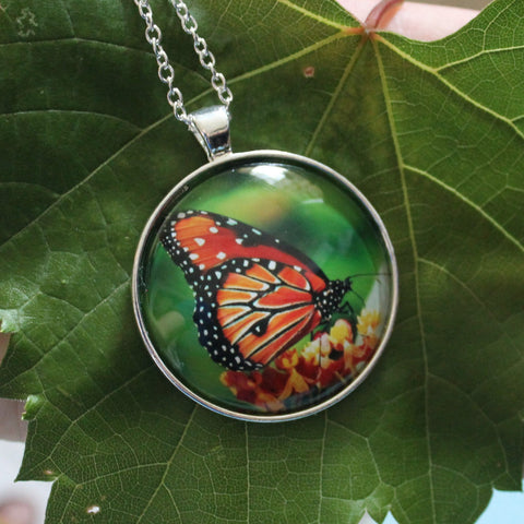 Viceroy Butterfly Pendant Necklace, Glass Pendant Necklace, North American Butterfly Necklace, Picture Pendant with Butterfly, Entomology