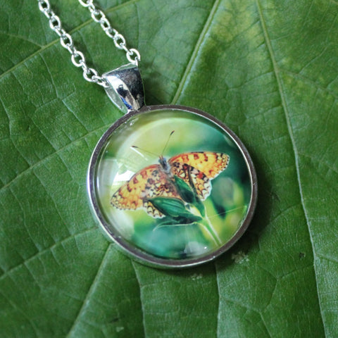 Gulf Fritillary Butterfly, Orange Butterfly Pendant, Butterfy Necklace, Image Necklace, Picture Pendant, Passion Butterfly, Entomology