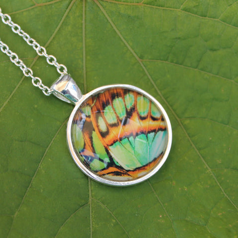 Malachite Wing Butterfly Necklace, Green Butterfly Wing Necklace, Silver Butterfly Necklace, Picture Pendant with Butterfly, Entomology