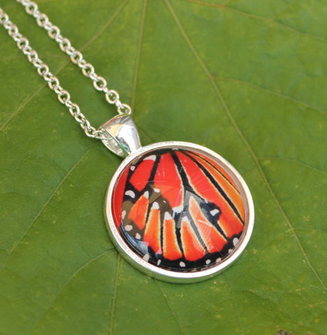 Queen Butterfly Wing Pendant Necklace, Glass Pendant Necklace, Silver Butterfly Necklace, Picture Pendant with Butterfly, Entomology