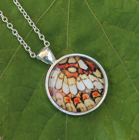 Fritillary Butterfly Wing, Orange and Yellow Butterfly, Butterfy Necklace, Butterfly Wing Necklace, Picture Pendant, Entomology Necklace