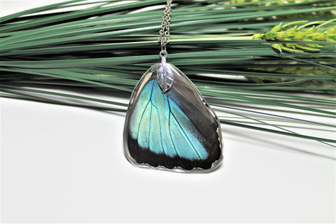 Real Blue Morpho Wing v2, Real Wing Necklace, Blue Butterfly Necklace, Morpho Deidamia Necklace, Entomology, Butterfly Wing Encased in Resin