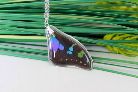 Real Purple Spotted Swallowtail Wing, Butterfly Wing Pendant Necklace, Purple and Black, Butterfly Wing Necklace, wing Encased in Resin
