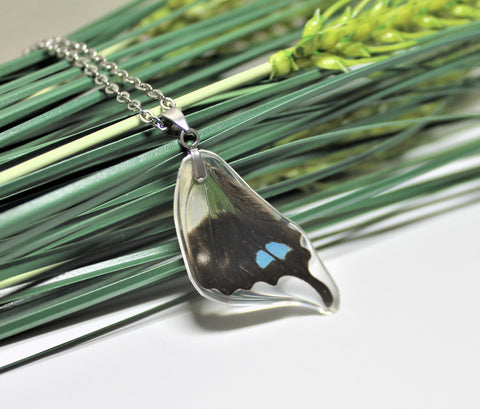 Real Purple Spotted Swallowtail Wing v2, Butterfly Wing Pendant Necklace, Graphium Weiskei, Butterfly Wing Necklace, wing Encased in Resin