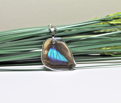 Turquoise Emperor Wing v2, Butterfly Wing Pendant Necklace, Doxocopa Cherubina, Butterfly Wing Necklace, wing Encased in Resin, Zoology,