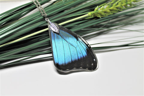 Real Blue Morpho Wing, Real Wing Necklace, Blue Butterfly Necklace, Morpho Deidamia Necklace, Entomology, Butterfly Wing Encased in Resin