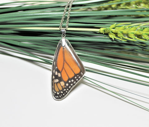 Real Monarch Wing, Monarch Necklace, Real Wing Necklace, Orange Butterfly Necklace, Danaus Plexippus Necklace, Entomology, Butterfly