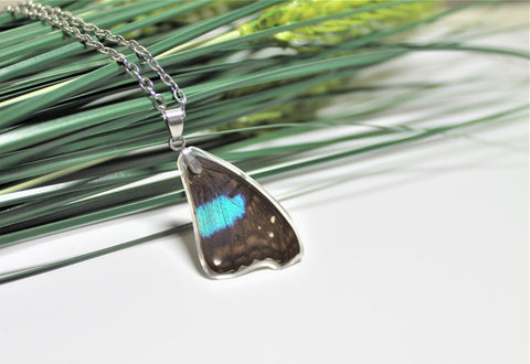Turquoise Emperor Wing, Butterfly Wing Pendant Necklace, Doxocopa Cherubina, Butterfly Wing Necklace, wing Encased in Resin, Zoology,