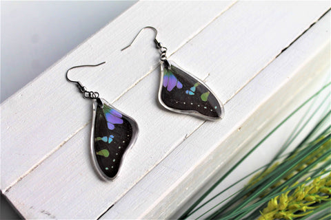 Graphium Weiskei Wing Earrings v2, Real Purple Spotted Swallowtail, Butterfly Wing Earring, Butterfly Wing Preserved, Wing Encased in Resin