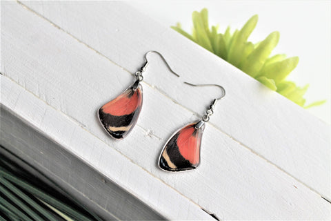 Callicore Cyllene Wing Earrings, Red Butterfly Wings, Butterfly Wing Earring, Butterfly Wing Preserved, Wing Encased in Resin, Entemology