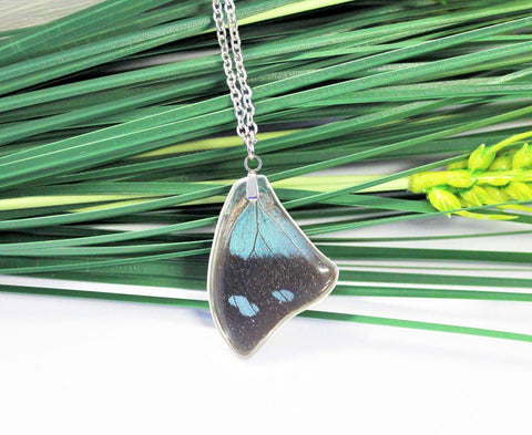 Anaea Butterfly Wing Necklace, Butterfly Wing Necklace, Blue Leafwing Butterfly, Entemology, Wing Encased in Resin, Zoology Preserved Insect