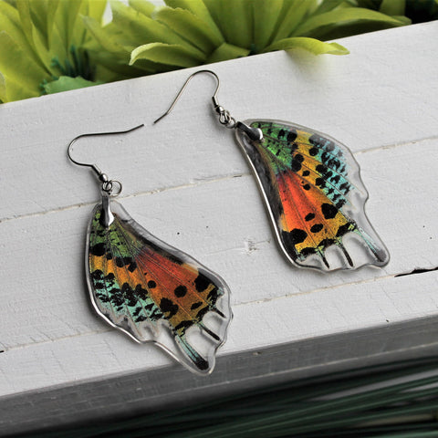 Real Sunset Moth Wing Earrings, Real Wing Earrings, Rainbow Moth, Chrysiridia rhipheus, Entomology, Wing Encased in Resin, Butterfly Wing
