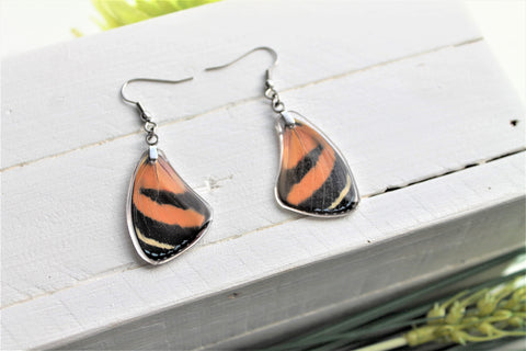 Callicore Cynosaura Wing Earrings, Red Butterfly Wings, Butterfly Wing Earring, Butterfly Wing Preserved, Wing Encased in Resin, Entemology
