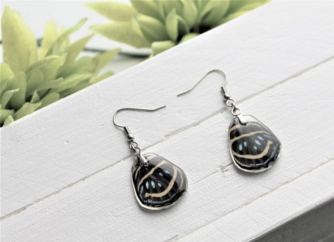 Callicore Aegina Lower Wing Earrings, Black Wings, Butterfly Wing Earring, Butterfly Wing Preserved, Wing Encased in Resin, Entemology