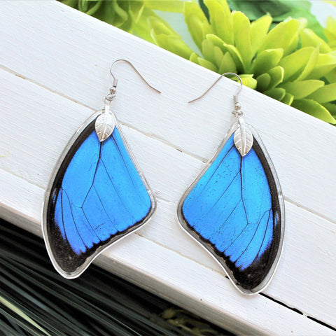 Real Blue Morpho Wing, Real Wing Earrings, Blue Butterfly Earrings, Morpho Menelaus Earrings, Entomology, Butterfly Wing Encased in Resin