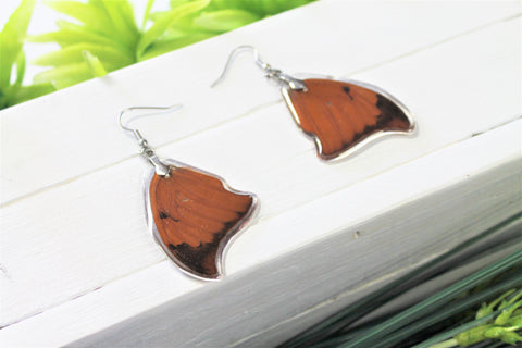 Anaea Butterfly Wing Earrings, Light Orange Leafwing Butterfly Wings, Wing Earring, Butterfly Preserved, Wing Encased in Resin, Entemology