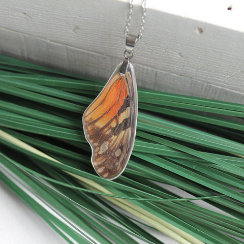 Juno Silverspot Wing Necklace, Butterfly Wing Necklace, Dione Juno, Butterfly Wing Pendant, wing Encased in Resin, Zoology, Entomology