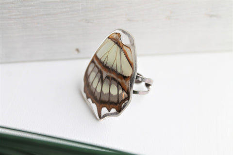 Malachite Wing Ring, Butterfly Wing Pendant Ring, Siproeta stelenes, Butterfly Wing Ring, Insect Ring, wing Encased in Resin, Preserved Wing