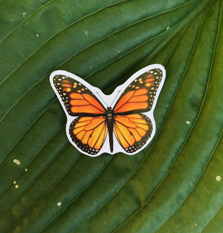 Monarch Butterfly Sticker, Planner Sticker, Laptop Sticker, Stickers, Craft Stickers, Nature Stickers, Sticker Collector