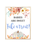 Fall Pumpkin Blue and Orange Floral Babies are Sweet Take a Treat Sign