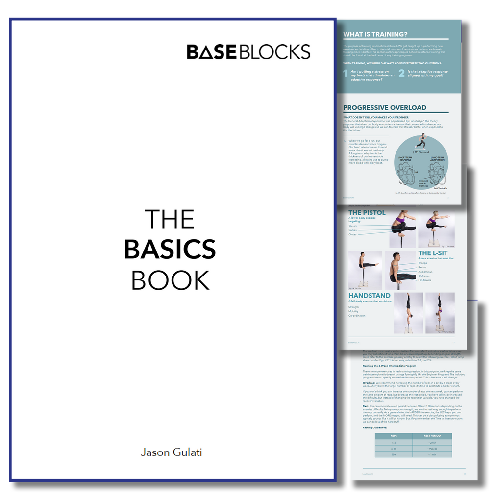 THE BASICS BOOK