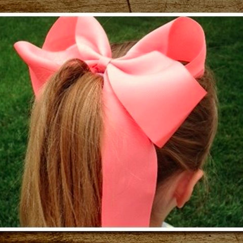 6 Inch Ponytail Hair Bow