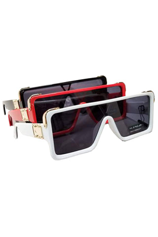 SUNGLASSES GROUP (C)(2552-5) <Bundle>