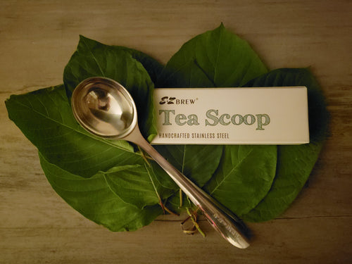 EZ Brew High Quality Stainless Steel Tea Scoop