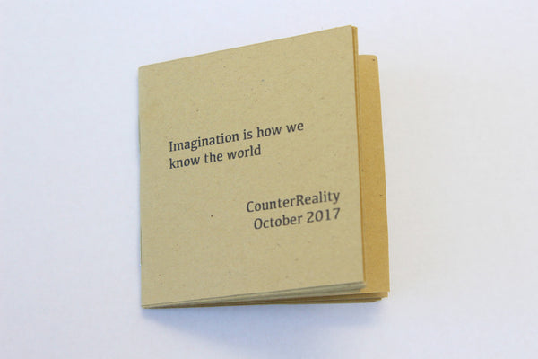 Pocket Book: Imagination Is How We Know the World
