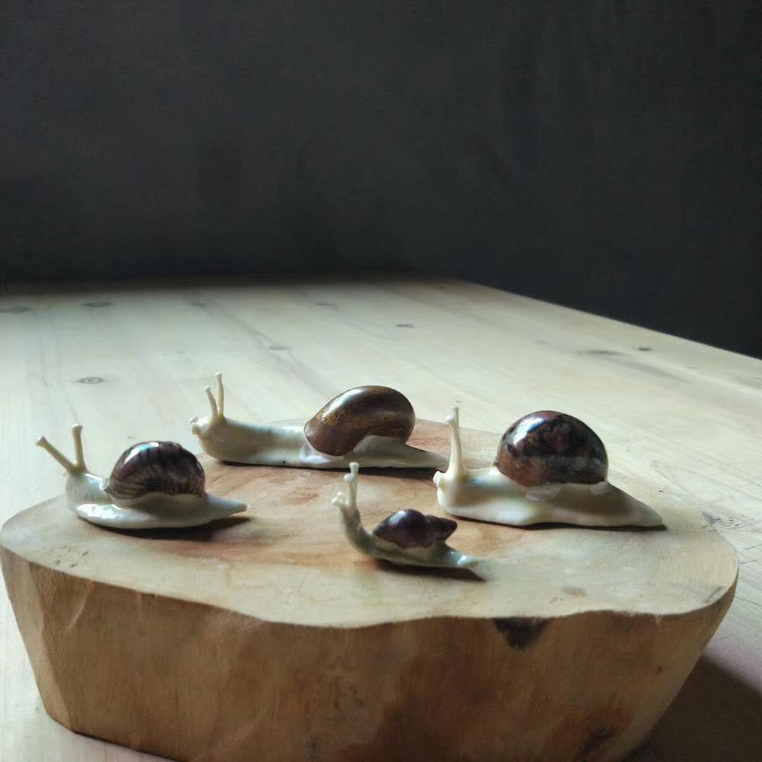 Snails Tea Pet