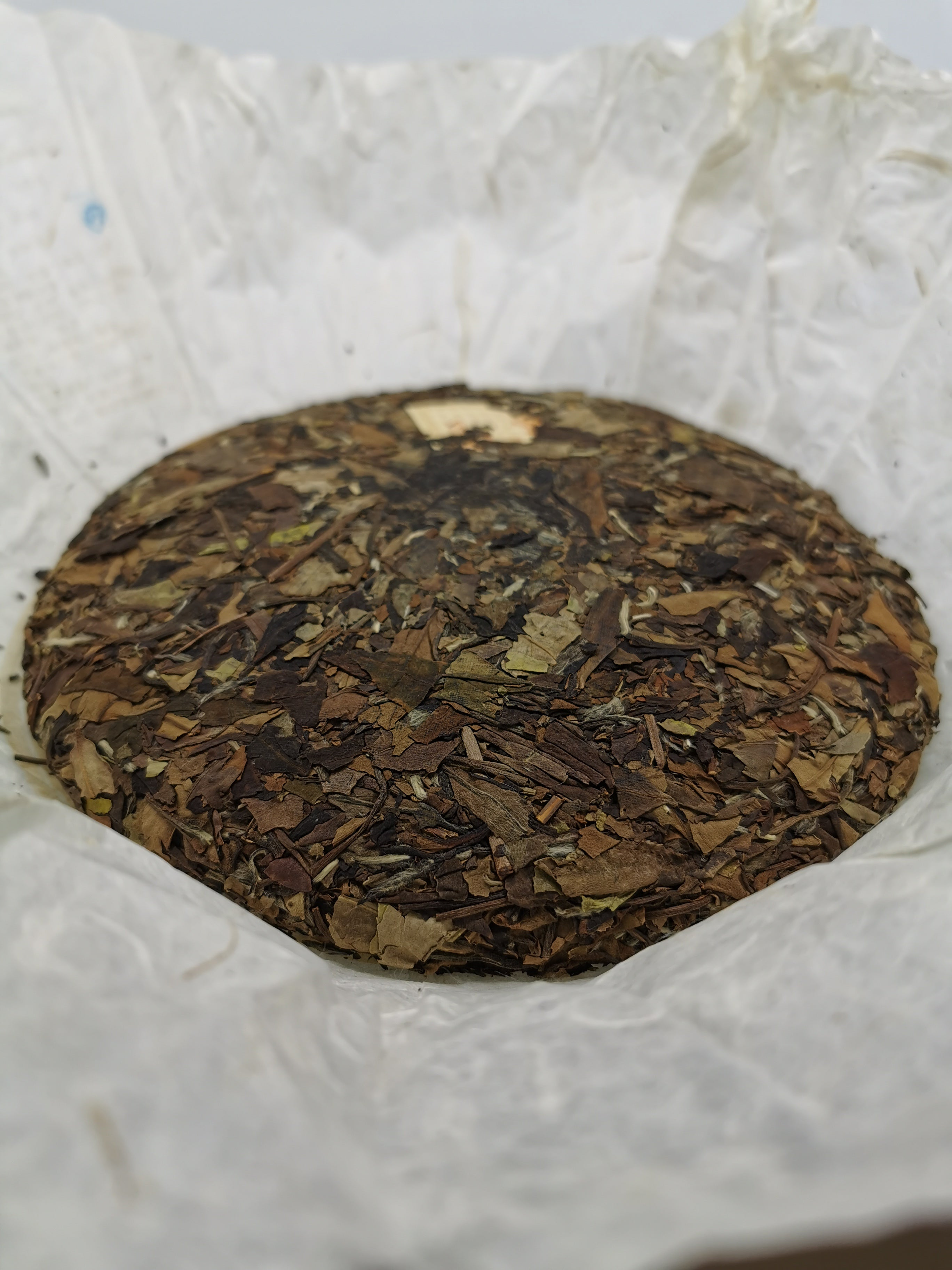 13 Year Old Shou Mei White Tea