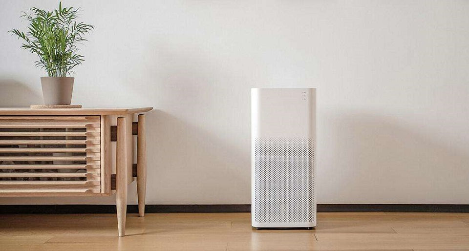 Will Air Purifiers Protect You From Viruses?