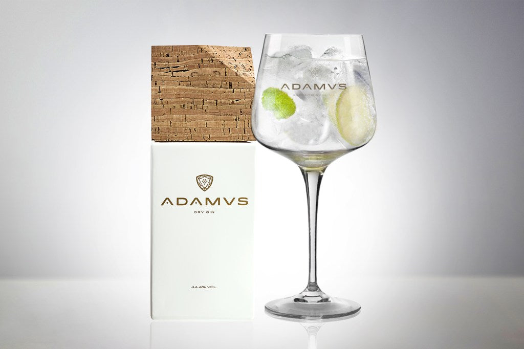 Adamus Gin Tonic With Lime and Mint
