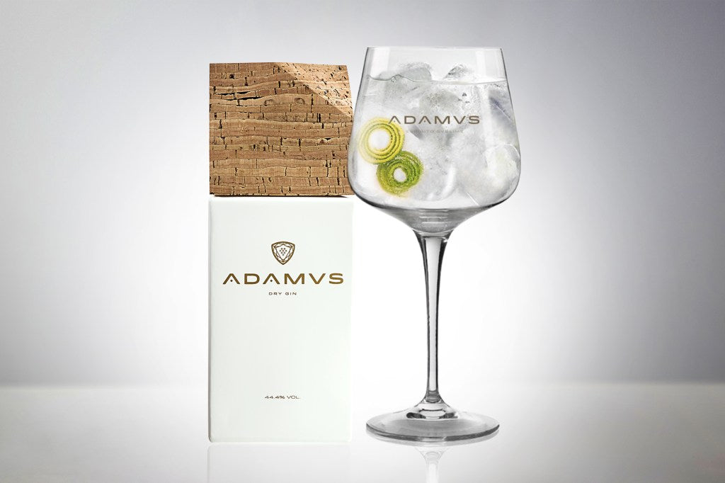 Adamus Gin Tonic With Lime Zest