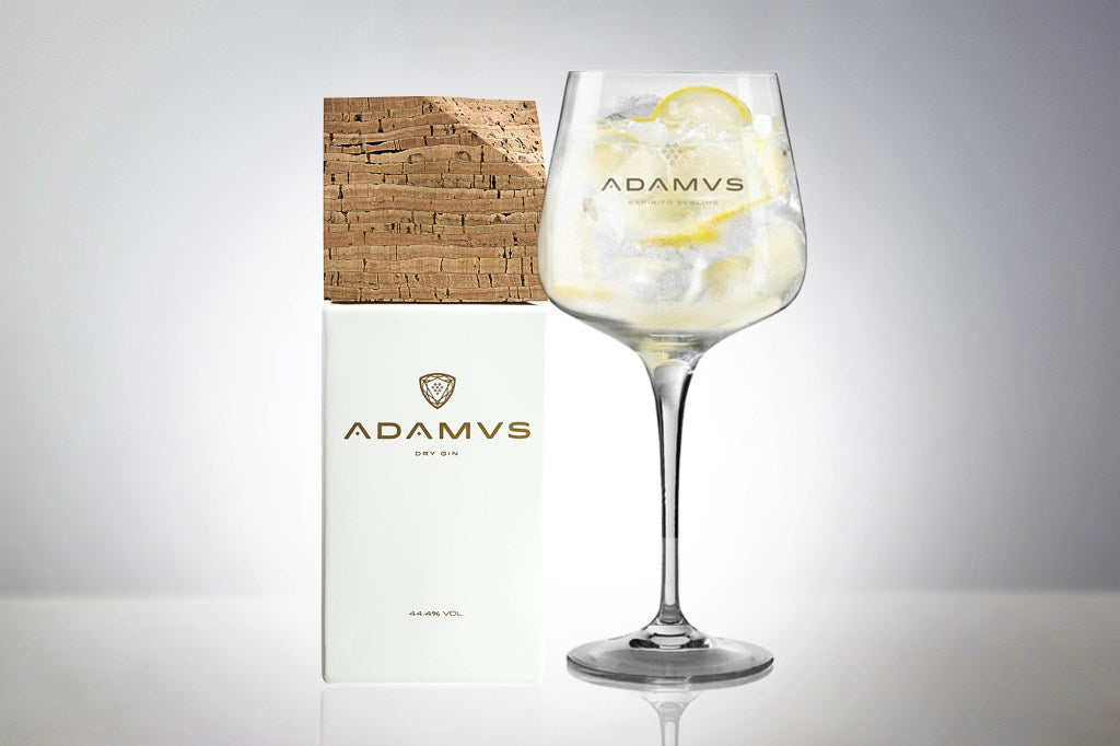 Adamus Gin Tonic With Lemon Zest
