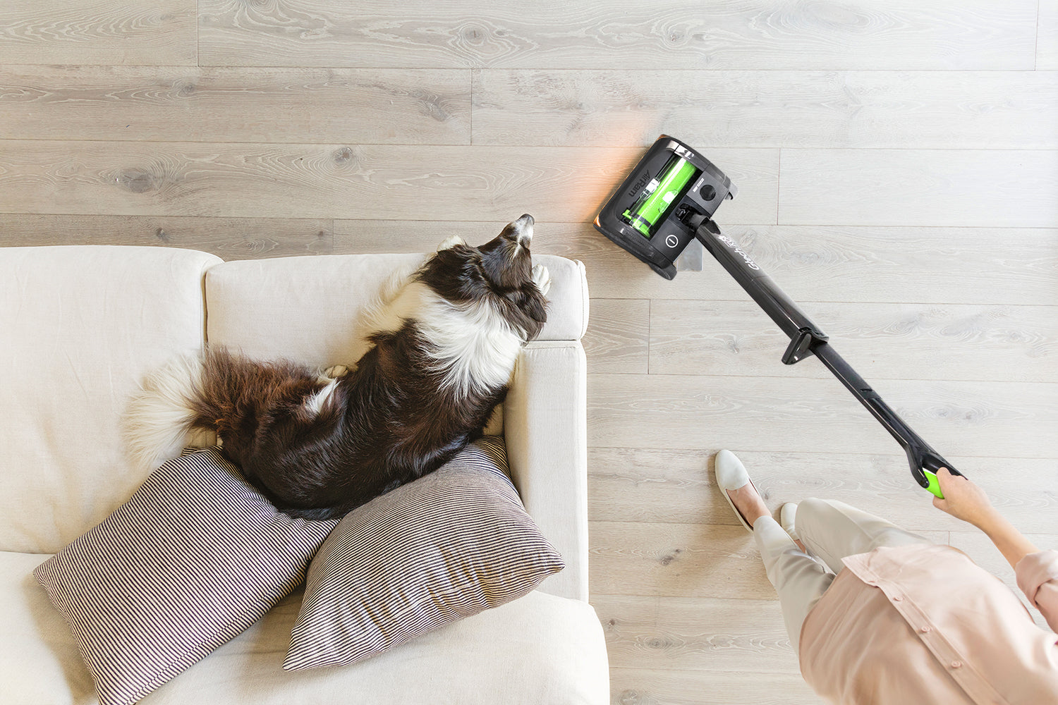 6 vacuum cleaning tips to win the battle against pet fur