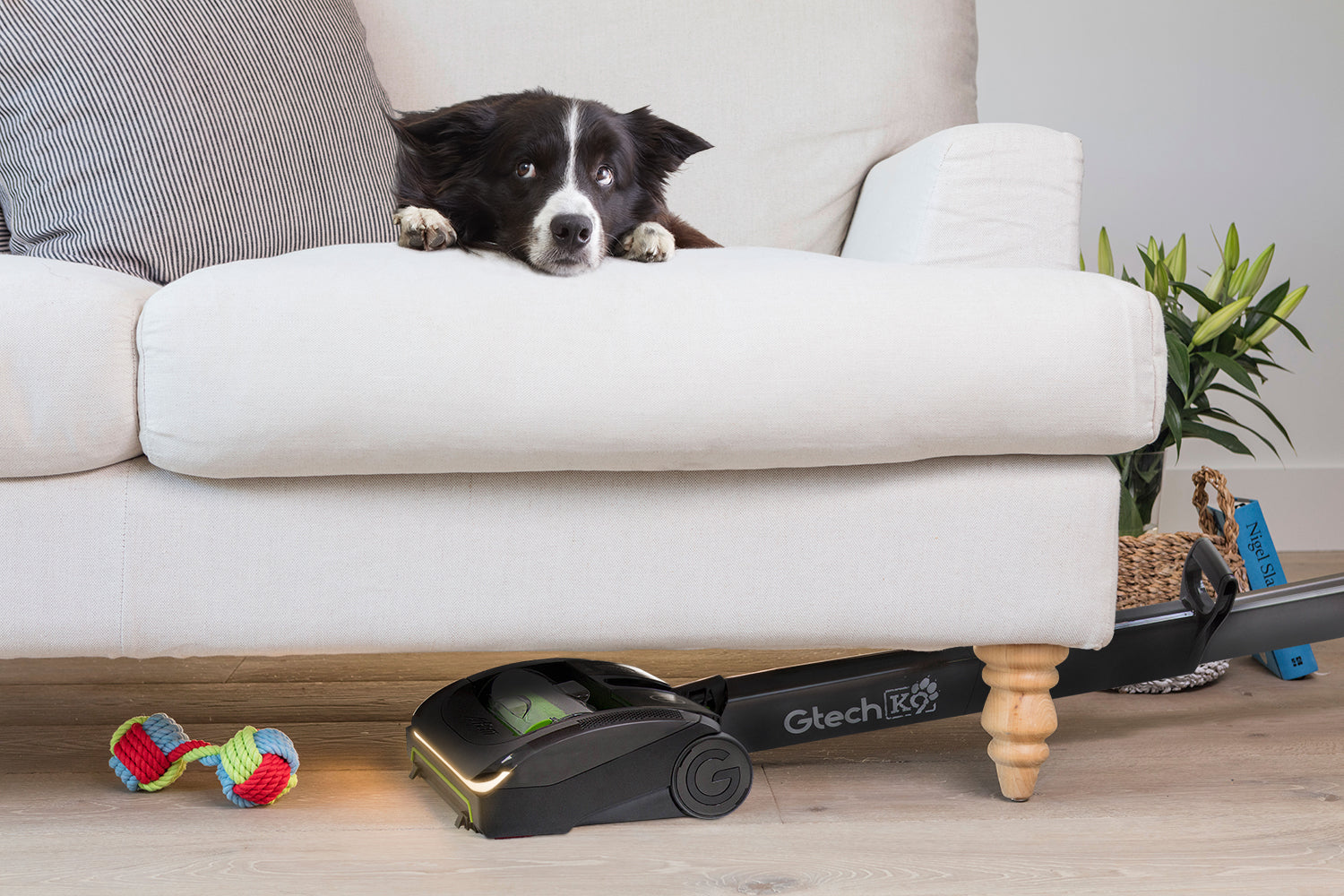 What you need to know before purchasing your next vacuum cleaner